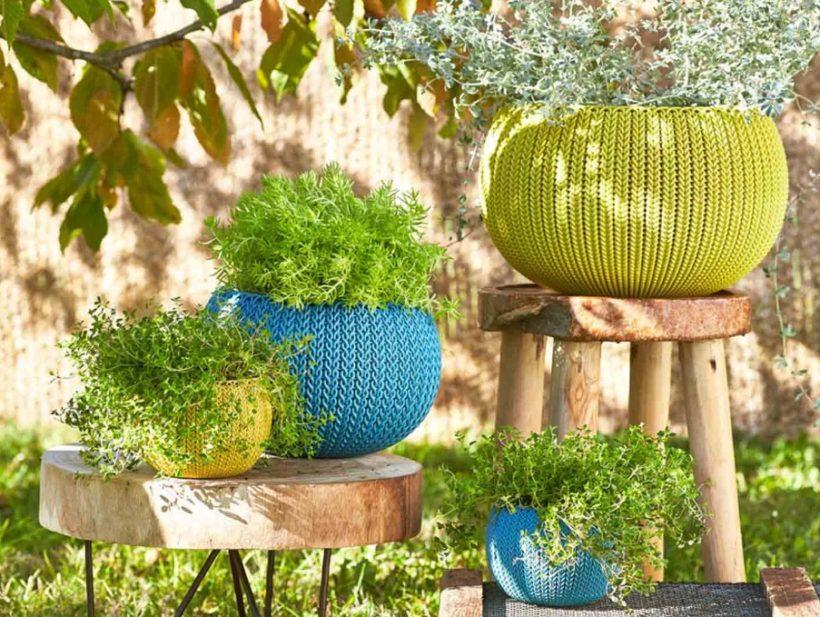 Plantes et pots de fleurs bleu et vert